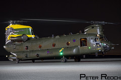 ZA683 / Royal Air Force / Chinook HC4 (Peter Reoch Photography) Tags: royal air force raf chinook hc4 ch47 helicopter northolt night photoshoot nightshoot event nellie elephant special paint joint command jhc