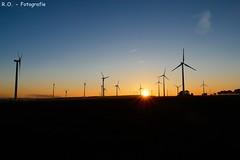 Sonnenaufgang / Sunrise (R.O. - Fotografie) Tags: sonnenaufgang sunrise windkrafträder windturbines sonne blauer himmel blue sky landschaft landscape lichtenau paderborn outdoor panasonic lumix dmcfz1000 dmc fz1000 fz 1000 nice color schöne farben