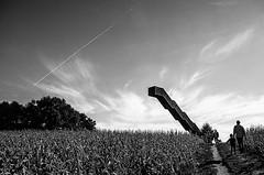 Stairway at the horizon (Tom Cuppens) Tags: vlooybergtoren tieltwinge callboys landscape landschap natuur nature vlaanderen flanders belgium belgie belgique zwartwit bw blackandwhite noiretblanc