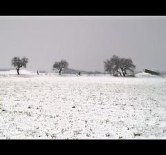 Hasta el 40 de mayo... (camarasa62) Tags: camp primavera arboles nieve olympus arbres fred campo invierno frio hdr neu photomix hivern oltusfotos mygearandme rememberthatmomentlevel1 vigilantphotographersunite