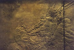 gypsum relief: Ashurbanipal lion hunting (Neo-Assyrian empire) (sftrajan) Tags: london archaeology museum ancient frieze relief londres museo britishmuseum gypsum londra mesopotamia lionhunt  ashurbanipal  neoassyrian ancientneareast  departmentofthemiddleeast northpalaceofashurbanipalninevah