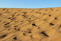 Desert - Zagora (Elidor) Tags: sand desert marocco zagora