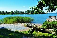 Helsinki 3 (Elena Delahaye) Tags: finland nature helsinki island sea north scandinavia suomi