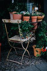 * (Marga Corameta) Tags: garden vintage oldfurniture strawberries plants herbs pots gardening berlin germany