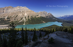 Peyto Lake, Banff National Park (PhotoDG) Tags: peytolake banffnationalpark lake colour banff nationalpark glacier glacierfed icefieldparkway landscape