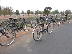KhajurahoCycling001 (tjabeljan) Tags: india khajuraho cycling platteland village dorp