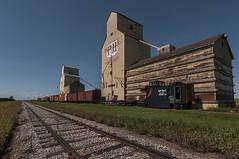 Small-town highrise (Len Langevin) Tags: grainelevator ph train tracks railroad railway mossleigh alberta canada old building prairie icon