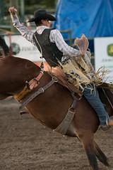 Tak_CPRA_2016-5141 (takahashi.blair) Tags: coachtak rodeo blairtakahashitakahashiblaircoachtakblairtakahashi pincher creek barrel racing bronc rope bareback steer bullriding