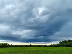 Field, Northumberland County, Ontario Canada (duaneschermerhorn) Tags: field farm clouds stormclouds storm