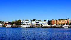 Sheepshead Bay, View from the Shore Boulevard (dimaruss34) Tags: newyork brooklyn dmitriyfomenko image sheepsheadbay