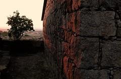 red light (*F~) Tags: beiraalta prdosol granito rvore casa luz sombra tempo memria arquitectura tradicional red light stones grey dark portugal portuguese identity