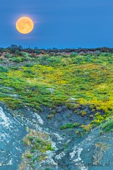 Moonrise (Mathieu Dumond) Tags: canada arctic nunavut kugluktuk coppermine river bank mud mudhill tundra vegetation moon fullmoon colors mathieudumond umingmakproductions vertical portrait saturation summer august