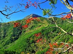 DAO-87207 (Chen Liang Dao  hyperphoto) Tags:   taiwan