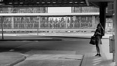 Handy... (jaap spiering | photographer) Tags: jaapspiering jaapspieringphotographer jaapspieringfotografie blackandwhite monochrome zwartwit bw noiretblanc streetphotography street people mens mensen woman vrouw women vrouwen femmes femme gx8 mobile denhaag thehague 070
