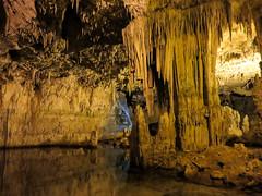 Grotte di Nettuno (DeclivePapillon) Tags: sardegna sardinia summer estate grotte nettuno capo caccia