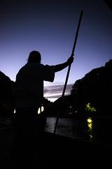 (m-miki) Tags: nikon d610 japan kyoto arashiyama katuragawa       summer night cormorant fishing