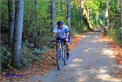 Cycling Elk/Beaver Lake Park railtrail (Bill 1.6 Million views) Tags: elkbeaver elklake beaverlake capitalregionaldistrict crd crdparks park 10kwalk 10k 9km 10kloop vsrailway vs rails2trails railway railtrail pier fishingpier