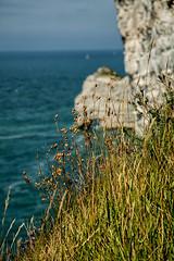 tretat (Patrick Heider) Tags: tretat seebad normandie felsklippen klippen canon 5d mark iii region frankreich kreidefelsen 76790 atlantikkste 24 105