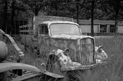 Blitz again (Ronald_H) Tags: wingsofliberation bevrijdendevleugels war museum best netherlands 2016 opel blitz wwii german military truck leica m2 rangefinderr ilford fp4 diafine bw film rusty