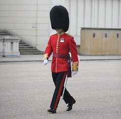 Img554951nx2 (veryamateurish) Tags: unitedkingdom british military army london wellingtonbarracks changingoftheguard publicduties ceremonial guardmounting newguard footguards householddivision grenadierguards