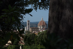 Framed (Federica Schifano) Tags: firenze florence italia italy palazzopitti giaridnidiboboli giardini garden nature trees architecture gothic medieval cattedrale cathedral santamariadelfiore cupola dome brunelleschi framed scorci views nikon nikon5200 streetphotography effes