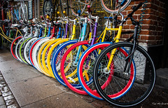 2016 - Baltic Cruise - Copenhagen - Bikes for Hire (Ted's photos - For Me & You) Tags: 2016 balticcruise tedmcgrath tedsphotos cropped vignetting wheels copenhagen spokes colour colourful transportation