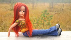 Fall  (Dolliina) Tags: sindy doll crochet