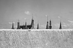 Et elles te pointrent du doigts, droites, justes mais fragiles. (Mona - B) Tags: europe flandre bruges brugge unesco patrimoine heritage architecture belfry tower tour beffroi hauteur hight roof top toit toiture ardoise tours flches cathdrale church monochrome black white canon sky ciel