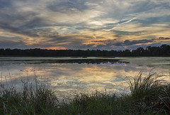 Twighlight at Pelican Lake (SteveFrazierPhotography.com) Tags: lake heron sunset egrets pelicans birds islands reeds grasses clouds trees treeline water reflections shore shoreline beautiful highway136 illinois il usa unitedstates america stevefrazierphotography sun