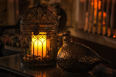 Home Sweet Home  (mightymuffinful) Tags: home decor table birdcage candle warmth