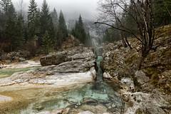 Wild Soa (marko.erman) Tags: soa slovenija slovenia river trenta mist misty mood moody landscape trees emerald isonzo beautiful nature travel preserved pure wild