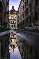 Institut de France, reflections (pierrepphotography) Tags: institutdefrance france paris reflections puddle