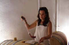IMGP8549 (Lucifer's Gaze) Tags: pentax k5  spain summer   winery  vinyard  cellar  rioja docarioja  sierradetolono