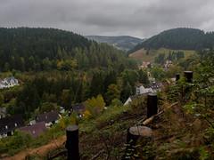 Ausblick - nach Baumfllung ;-) (mohnblume2013) Tags: wald outdoor harz deutschland berge huser ausblick