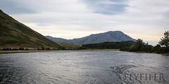 _MG_5006 (Flyfifer Photography) Tags: greatbritain highland invernessshire knoydart places scotland unitedkingdom