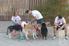 "Can-rerra Popular 2016 - Llegada y descanso tras la carrera -Arcadys.org Biopark Valencia-14 • <a style=""font-size:0.8em;"" href=""http://www.flickr.com/photos/145784091@N07/30261296105/"" target=""_blank"">View on Flickr</a>"
