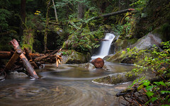 For All You Know... (John Westrock) Tags: nature forest longexposure trees waterfall deceptionfalls washington pacificnorthwest canoneos5dmarkiii canonef1635mmf4lis bwnd1000x