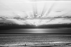 Bain du soir (frederic augris photographe) Tags: soleil mer bain baignade vague coucher de