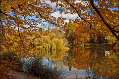 Douce France ; L'Automne à Besnçon. No. 1603. (Izakigur) Tags: besançon france automn trees doucefrance reflection flickr feel izakigur europe d700 nikond700 nikkor2470f28 green red yellow cian vert rouge eau water wasser doubs acqua