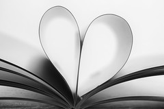 page edge (sure2talk) Tags: macromondays edge nikond7000 nikkor85mmf35gafsedvrmicro macro pageedge book shallowdof heart