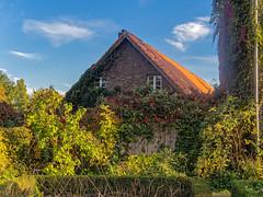 Sdpark Dsseldorf im Herbst (KL57Foto) Tags: olympus pen pm2 dsseldorf oberbilk wersten kl57foto oktober 2016 park parkanlage herbst nrw germany rheinland volksgarten bilk dsseldorfbilk
