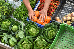 Fresh Vegetables (Paulo N. Silva) Tags: