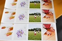 Velvet Fine Art Paper #3