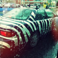 Zebra sedan. (gak) Tags: car rain vancouver sedan square mainstreet paint bc main mountpleasant stripe squareformat zebra mainst iphone mtpleasant iphoneography instagram instagramapp uploaded:by=instagram