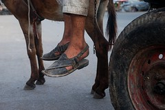 Self-Driving Vehicle (Raja Islam) Tags: pakistan feet wheel foot poor donkey vehicle worker cart karachi tyre saddar chappal selfdriving