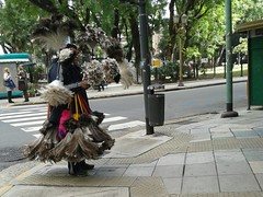 Caminando Buenos Aires (santiaguitogonzalez) Tags: vendedor plumeros ciudadbuenosaires caminandobuenosaires