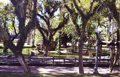 Curitiba - 07/2016 (Elisama Oliveira) Tags: curitiba brazil outside beautiful beautifulplace nature natureporn green