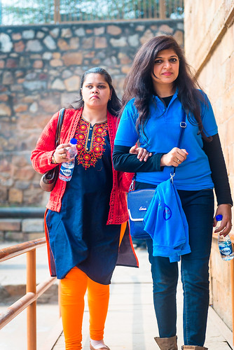 Accessible Tour of Qutub Minar: A traveller with her buddy. Travel buddies are trained and sensitised to assist persons with disabilities.