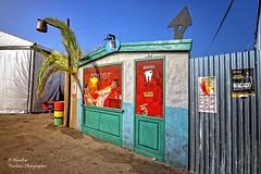 Dentist (Graffiti). Rototom SunSplash 23 European Reggae Festival. Benicssim (Spain) (Abariltur) Tags: abariltur castelln spain nikond90 afsdxnikkor1024mmf3545ged rototom rototomsunsplash23 europeanreggaefestival dentist grafiti graffiti consultadedentistaengrafiti excelenteorganizacindelrototom benicssim castell agosto2016