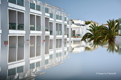 Lanzarote Palms (CharlesM-2) Tags: charlesm charlesm2 shadowpm2 d7100 nikon lanzarote august 2016 refelection table glass palm trees buildings canaryislands puertodelcarmen lanzarotepalms blue white